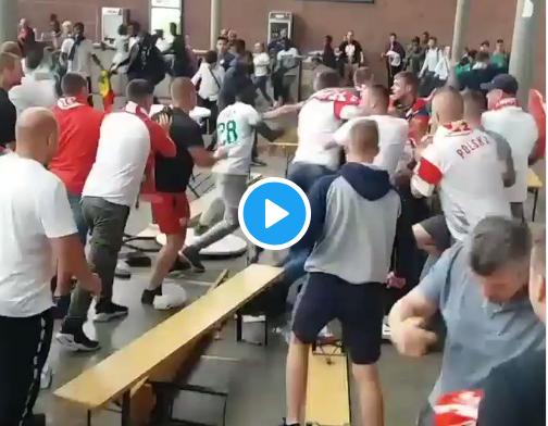 Schandalig: tientallen fans op de vuist in Antwerpen na WK-match Polen-Senegal