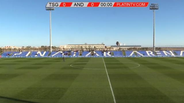 LIVE: Anderlecht - Hoffenheim, Rutten zet voor de eerste keer de lijnen uit