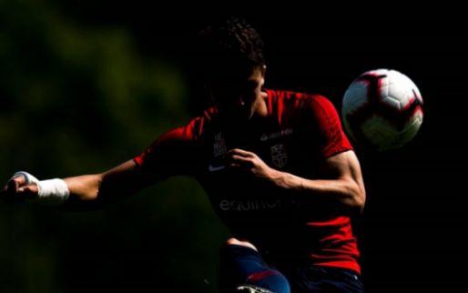 Afbeelding: 'Vitesse wil nog twee spelers halen: naast Brenet ook bezig met Noor'