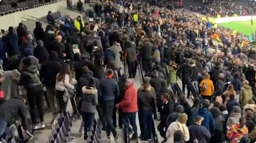 Bizarre beelden: furieuze Dier bestormt tribune en gaat Spurs-supporter te lijf