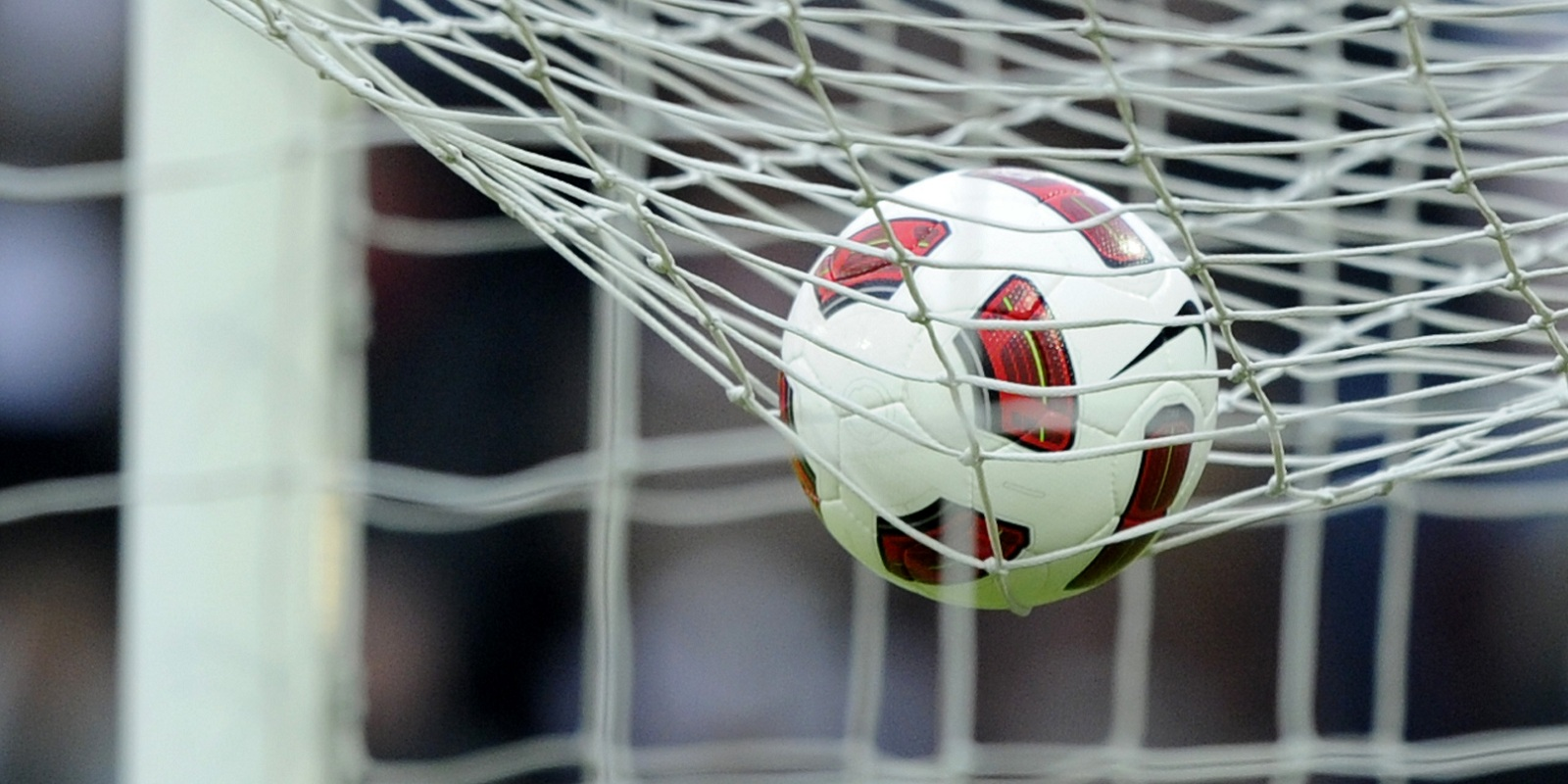 FC Sion strikt wederom een nieuwe trainer